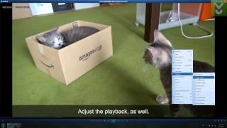 QQ Player - lecture de l'audio et des fichiers vidéo de différents formats, Télécharger extraits Vidéo