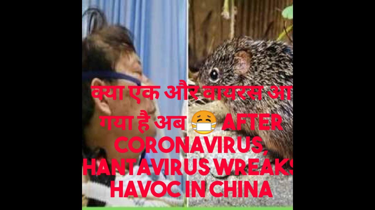 After Coronanvirus now ! Hantavirus I hantavirus china I ...