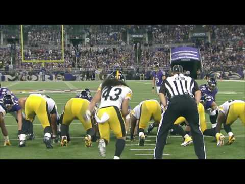 Troy Polamalu Highlight Reel