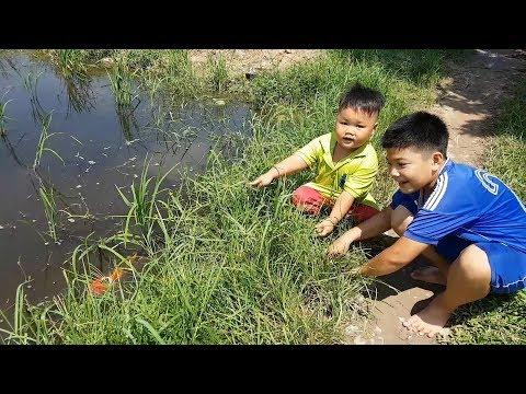 Trò Chơi Bé Pin Cá Chạy ❤ ChiChi ToysReview TV ❤ Đồ Chơi Trẻ Em Baby Doli Fun Song Bài Hát Vần Thơ