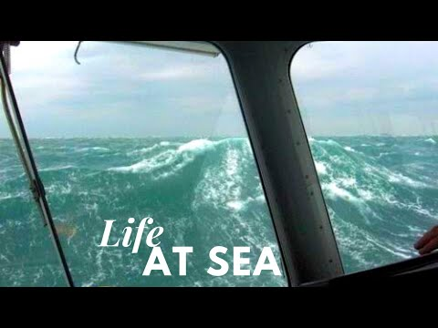 Officer of the watch | Ordinary day at Pacific Ocean | Life at Sea