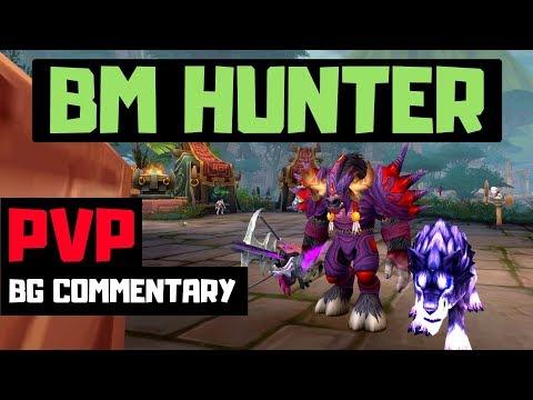 BM Hunter PVP   BFA 8.0.1