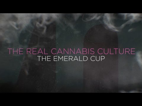 The Real Cannabis Culture