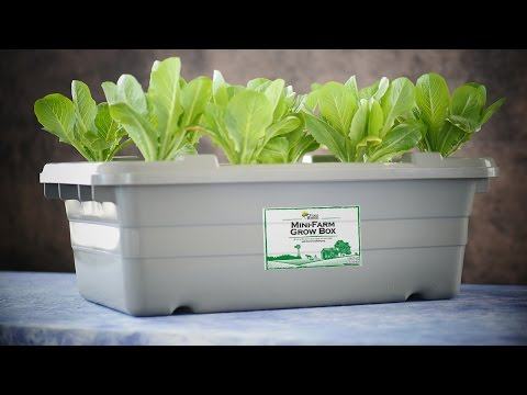 Food Rising Mini-Farm Grow Box official launch video