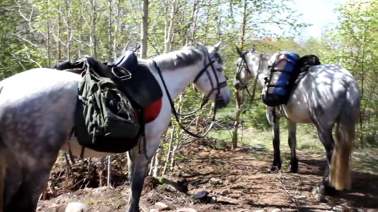 Озеро Байкал, конные туры  2020  -  horse trek to the village of Bolshie Koty 2018