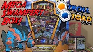 mega swampert ex - HD1920×1080
