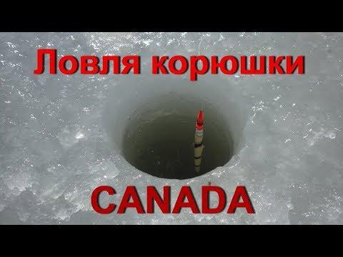 Ловля корюшки в Канаде, Шедиак. День второй.