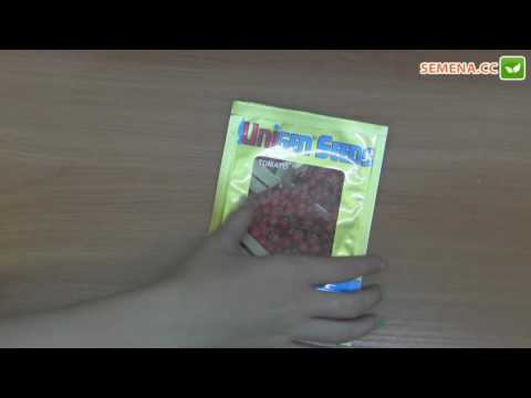 Кимберлино F1 томат (United genetics) антифейк