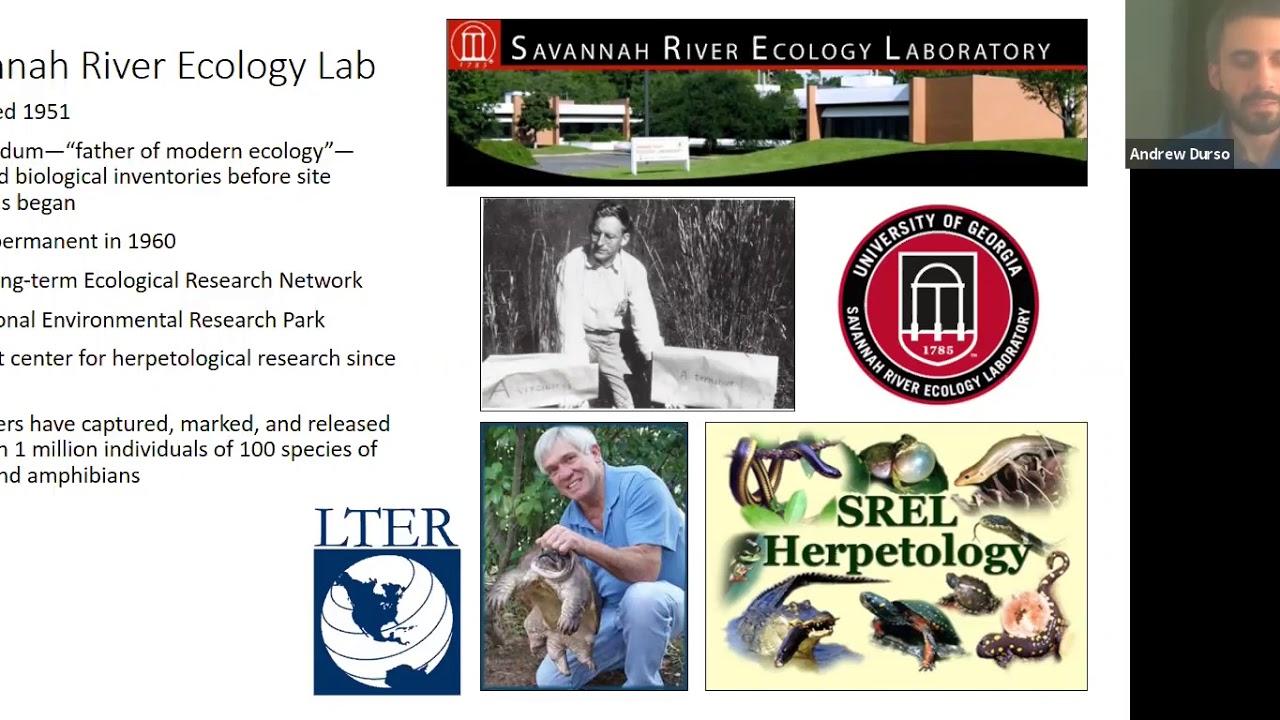 "Download Archbold Seminar Series: Dr. Andrew Durso presents ""Ecology of semi-aquatic snake communities"""