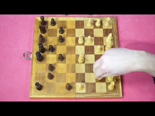 Bewegtes Schach mit Max