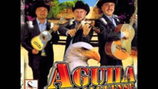 Trio Águila Hidalguese - Disco Completo