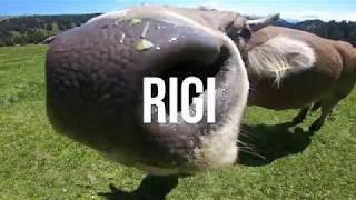 Rigi, Switzerland - Cinematic video