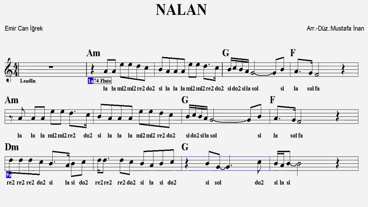 NALAN--Am--:Guitar,Flute,Keyboard,Violin,Melodica,Ukulele,Recorder.