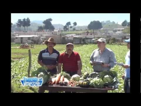 Inversion y Desarrollo con Luis Velasquez 257. Potencial de San Andrés, Itzapa, Chimaltenango