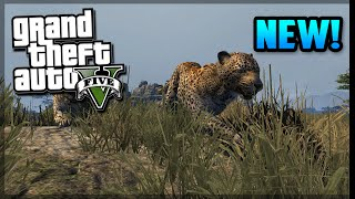 GTA 5 NEW Pets, Animals, & More - Gameplay Breakdown! (GTA V)