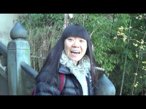 Wudang Mountain China -  Hiking up -Tao Travel