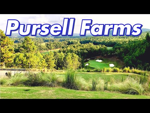 Most Beautiful Hole I've Played   FarmLinks At Pursell Farms Part 3