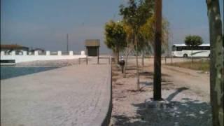 vlog: Praia fluvial de Ereira