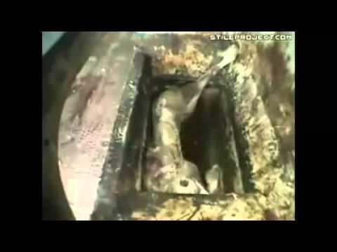 Duhun Rashin Sani Yafi Duhun dare duhu kai by Misbahu Jabir Damagaram +22797200671