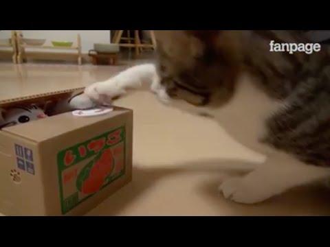กระปุกแมวออมสิน แมวเขี่ยเหรียญ