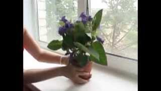 видео Пластиковые подоконники Витраж