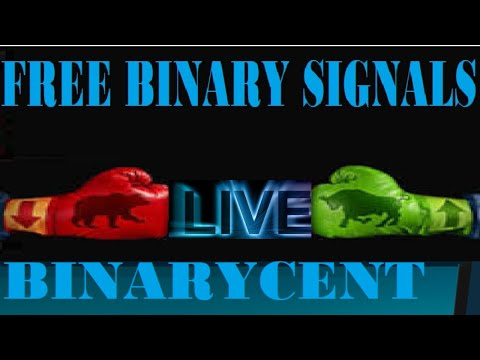 copy free signals to the binarycent review platform good start for newbie traders