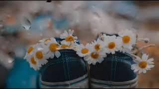 Kürtçe kısa aşk şarkısı kürtçe duygusal sahne güzel sözler en güzel whatsapp dur