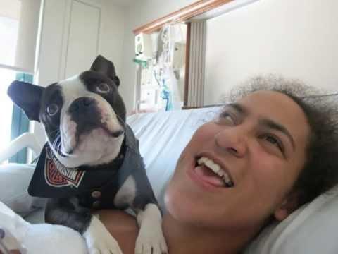 What Dogs and women do | ozara gossip