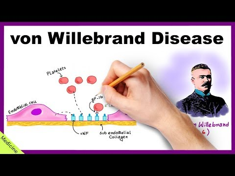 VON WILLEBRAND DISEASE: Pathophysiology, Clinical Findings, Diagnosis, Treatment