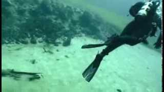 Clear Lake Scuba Diving Trip