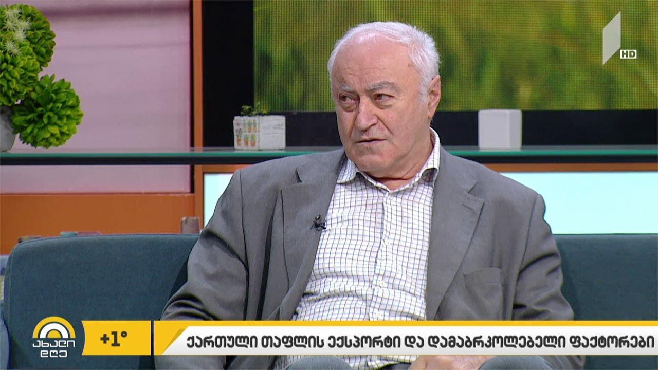 ქართული-თაფლის-ექსპორტი-და-მეფუტკრეობის-სექტორის-პრობლემები