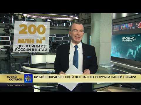 Юрий Пронько: Китай сохраняет свой лес за счет вырубки нашей Сибири
