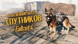Руководство Fallout 4 Как экипировать спутников