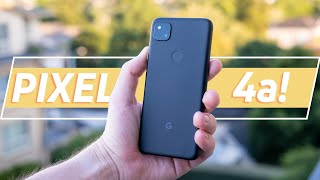 Google Pixel 4a review: The BEST Pixel phone??