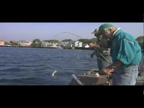 Dvo 1102 flounder fishing in belmar nj on the shark river for Belmar nj fishing report