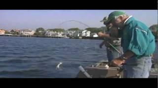 DVO 1102 Flounder Fishing in Belmar, NJ on the Shark River