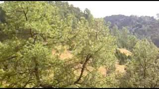 Barrancas del Cobre (Copper Canyon) Parte 01, Chihuahua, México.  Noviembre 2009. Oscar Mora.