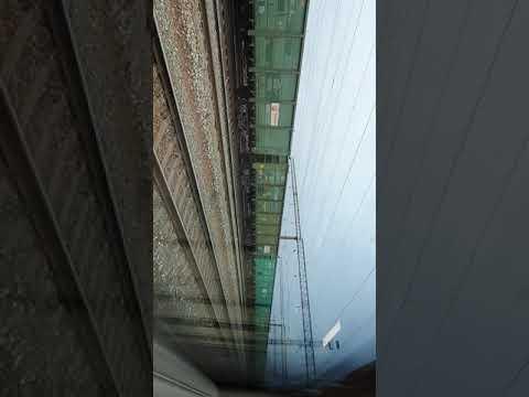 Вид с окна поезда  🚅