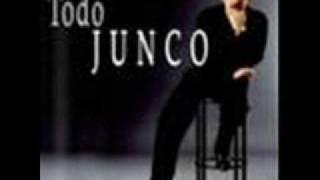 Junco -gwendolyne
