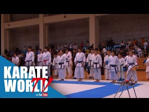 Adidas BMJ Cup Karatedo Championships (2013) Aichi, Japan - アディダスBMJカップ空手道選手権大会(2013)愛知県、日本[Match]