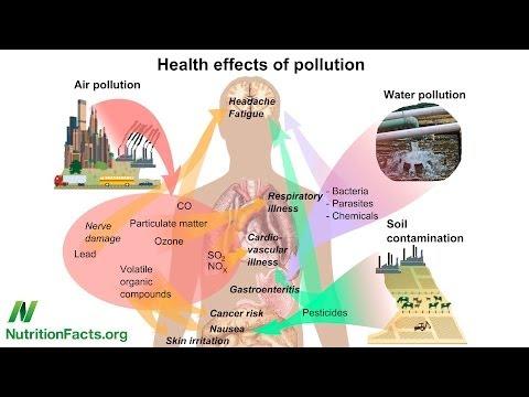 Diabetes and Dioxins