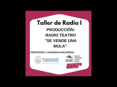 Radio Teatro - Radio I Cecam
