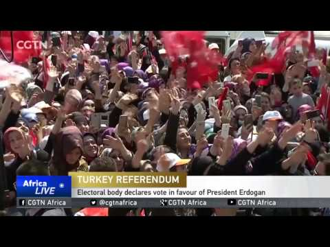 Turkish electoral body declares vote in favour of President Erdogan