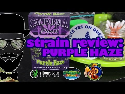 Strain Review: California Finest Purple Haze (Silver State Trading) -  YoungFashioned com
