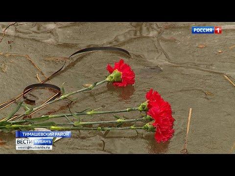 Нам помогут русские травы — Малая церковь / Публикации