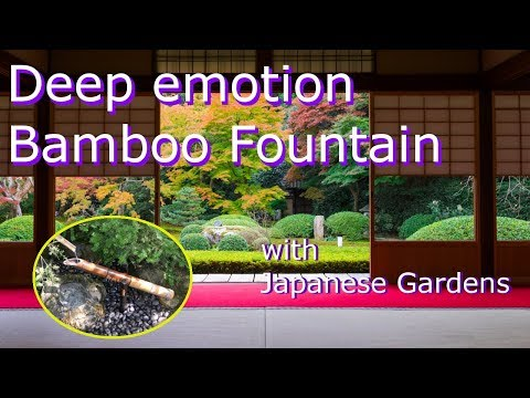 Bamboo Water Fountain with beautiful Japanese Gardens | White Noise for Sleep, Studying, Meditation