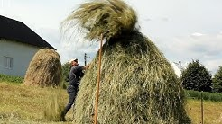 Making Haystacks by Hand in Romania