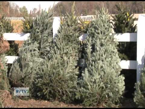 Roanoke County Today   December 2014