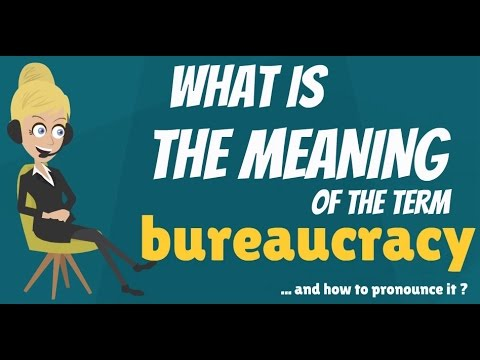 What is BUREAUCRACY? What does BUREAUCRACY mean? BUREAUCRACY meaning, definition & explanation