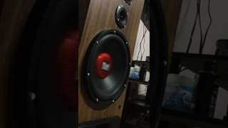 Bass I Love You On My 12In Sub